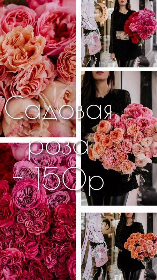 Официальная группа Вконтакте салона цветов Premier Flowers