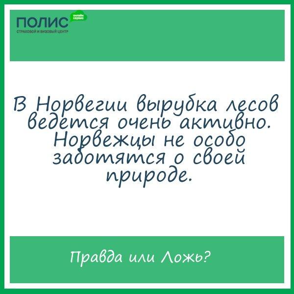 Официальная группа Вконтакте центр страхования и оформления виз Полис812 на метро  Озерки 225af72de91