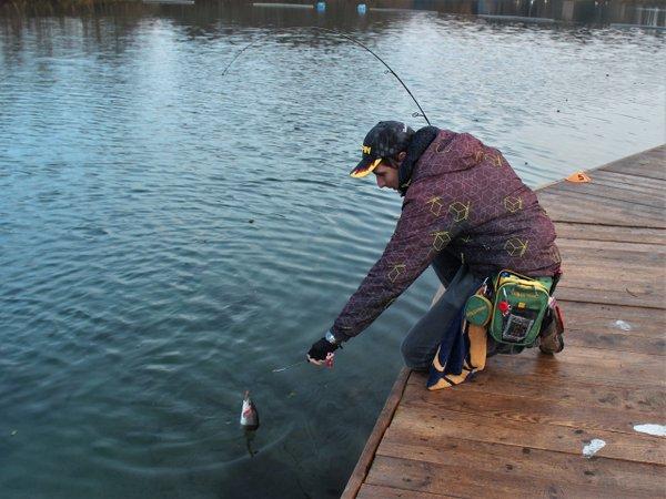 Как ловить зимой на рогатки? Рыбу запретят вылавливать как её установить