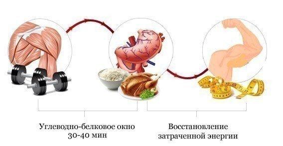 vizivayut-tsistit-vidi-bakteriy