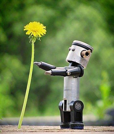 фотография Детского клуба робототехники Роботрек-Омск на улице Степанца